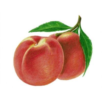 Alma-ŐSZIBARACK 100%-os, rostos natúr gyümölcslé 3 l