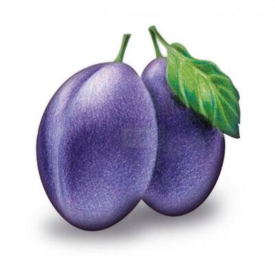 Alma-SZILVA 100%-os, rostos natúr gyümölcslé 5 l